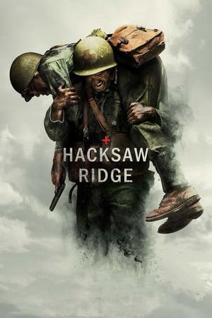 Flat to 29% OFF on Hacksaw Ridge DVD via Oldies